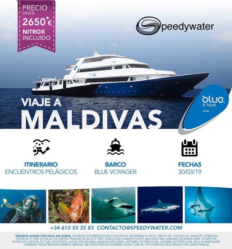 Speedywater Maldivas 2019