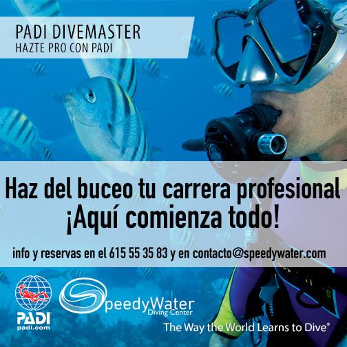 PADI_Divemaster